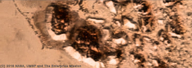 Pluto-arcologies-close-up-color-UMSF