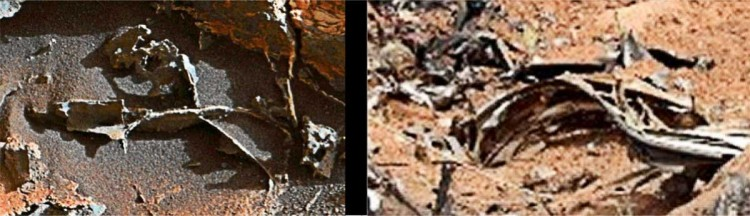 Curiosity-Earth-junk-comparison