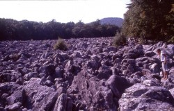 1021-Blue-Rocks-Boulder-Field,-Pennsylvania